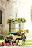 Fotografia vino-stampa, chatenois, Alsazia, Francia