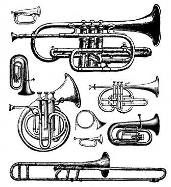 brass instruments on white