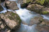 acqua di fiume di montagna