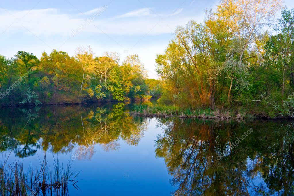 Autumn on river