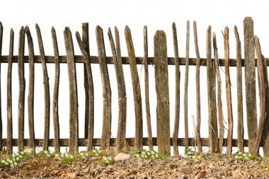 Old and rough wooden fence