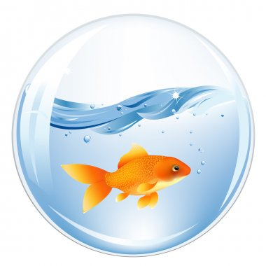 Ball With GoldFish In Water