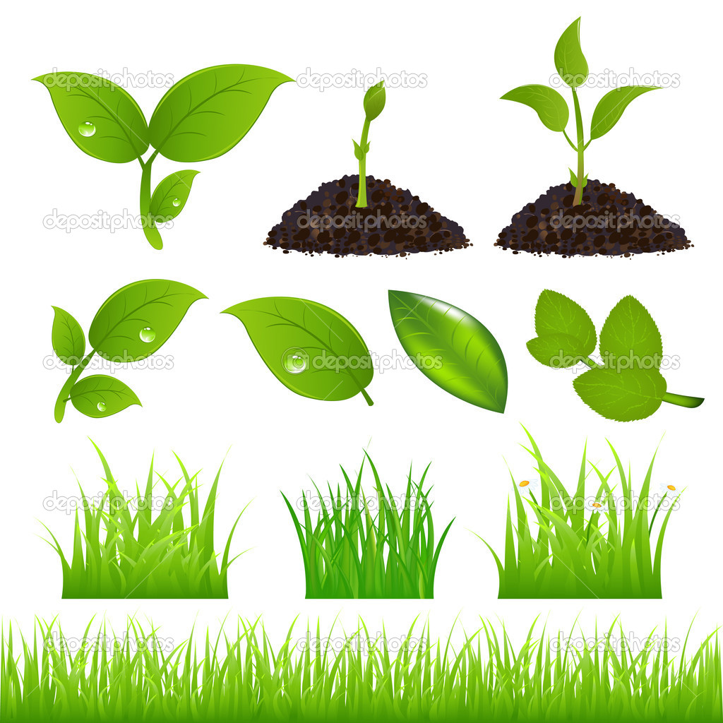 Green Spring Elements Set