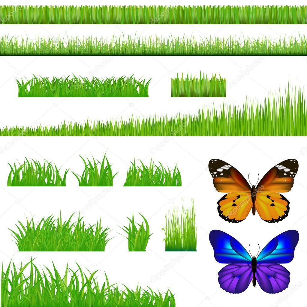 2 Butterflies And Green Grass Set