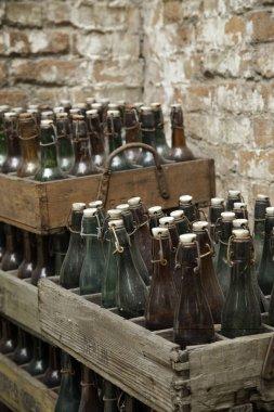 Old beer bottles