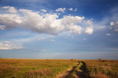 Dry road in steppe