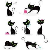 Fotografia collezione sagoma gatto nero