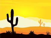 Fotografia tramonto deserto Messico con piante di cactus