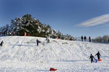 Sledding down the Hill - Winter Scenes stock vector