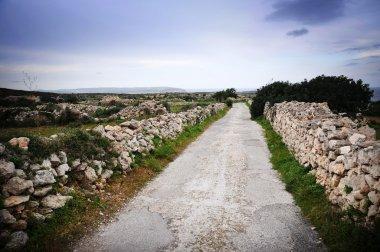 Stone wall lining a narrow country road