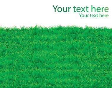 Grass vector pattern background