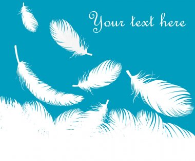 Feathers vector background for poster or card stock vector
