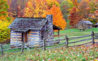 Log cabins in autumn
