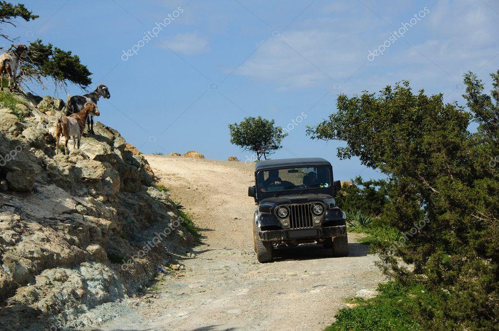 Cyprus by car