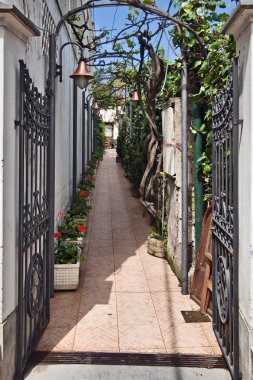 Anacapri street, Capri,