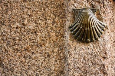 Shell, symbol of way