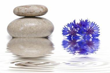 Zen balance with wild flowers 3.