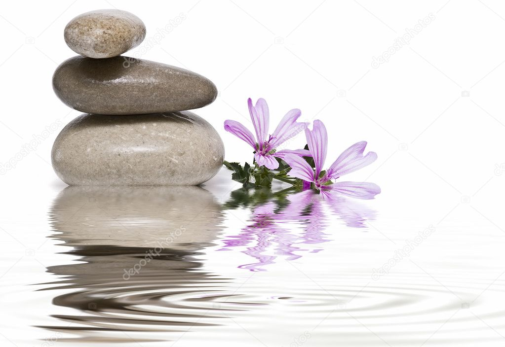 Zen balance with wild flowers 9.