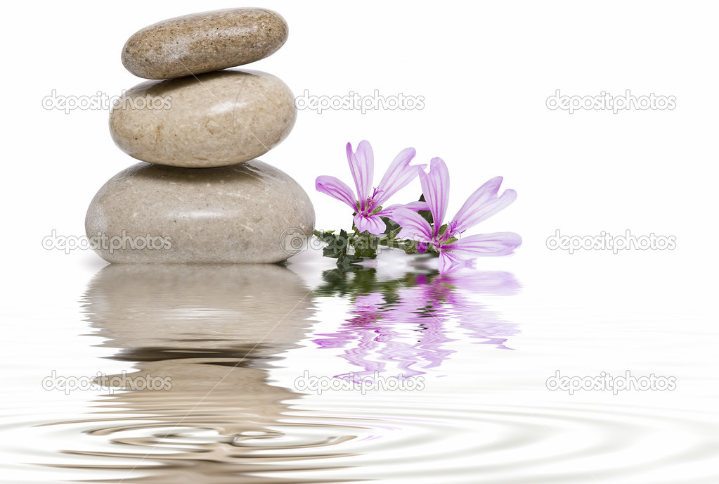 Zen balance with wild flowers 8.