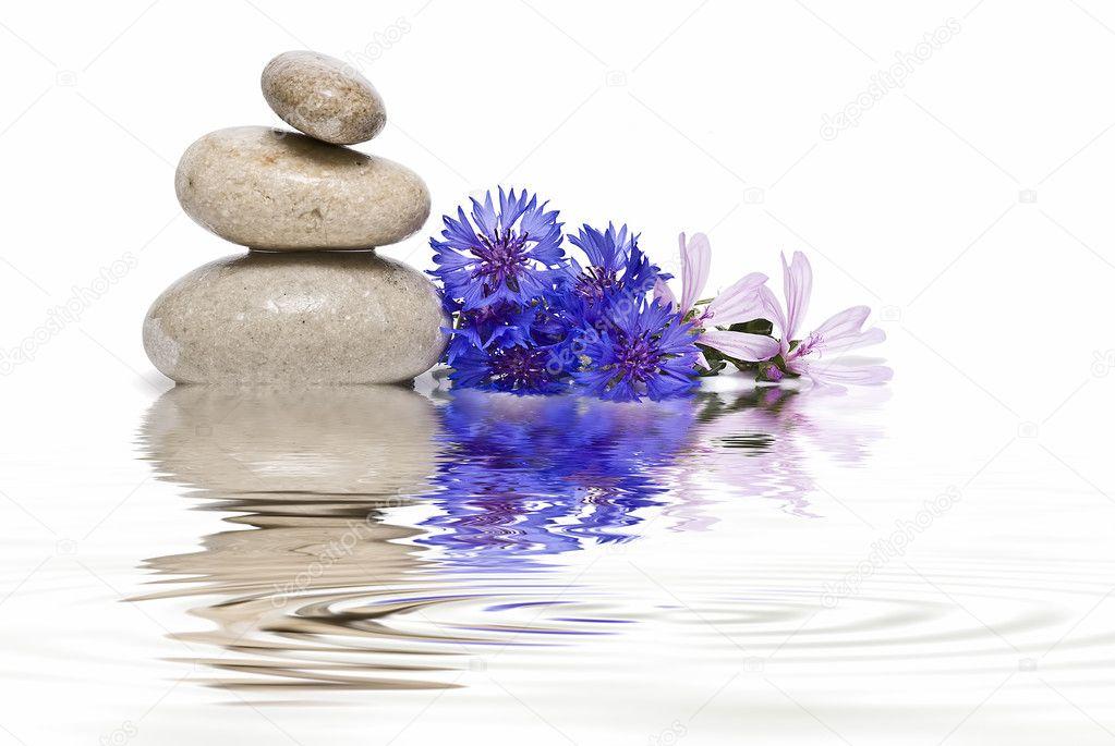 Zen balance with wild flowers 2.