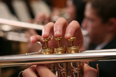 Close-up of Man Playing Trumpet