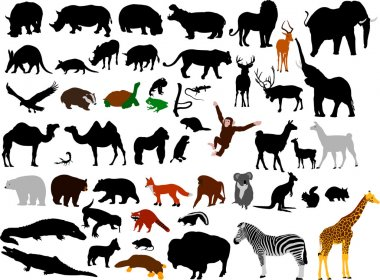 Collection of wild animals vector silhou