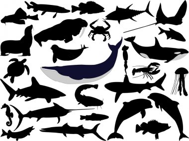 Collection of aquatic wildlife vector silhouettes stock vector