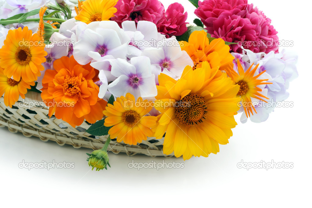 Flowers in a basket postcard
