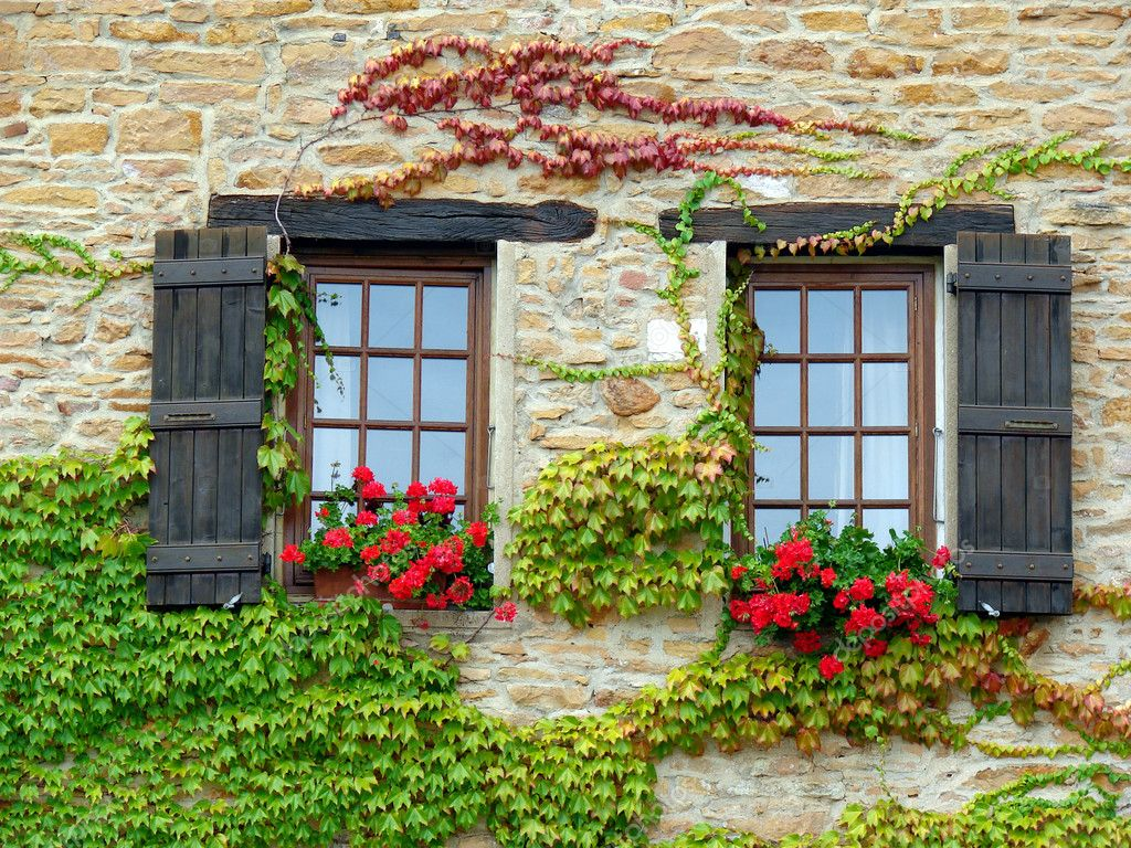 Wall with windows and flowers