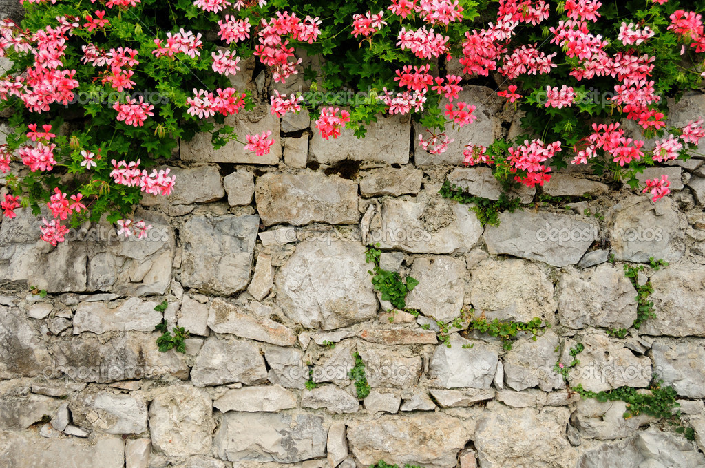 Picturesque stone wall