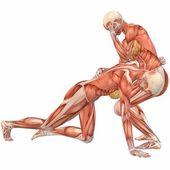 ženské lidské tělo anatomie pouliční boj