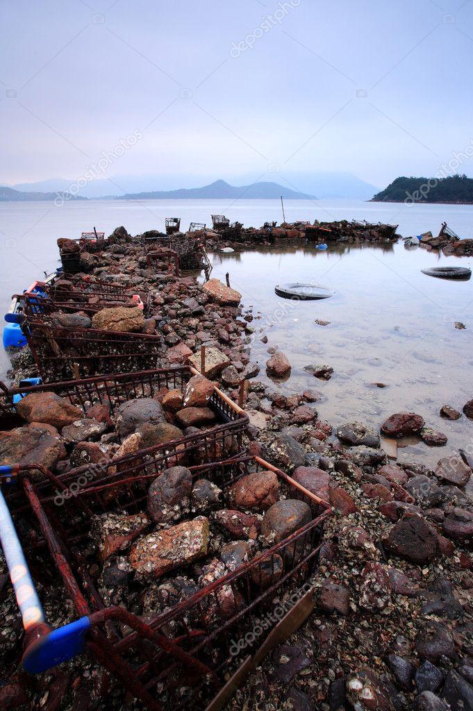 Wasted at coastline
