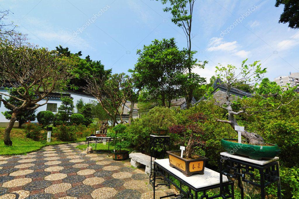 Jard n chino tradicional fotos de stock leungchopan for Jardin chino