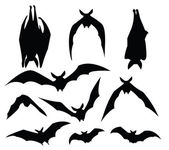 Photo Bat silhouette