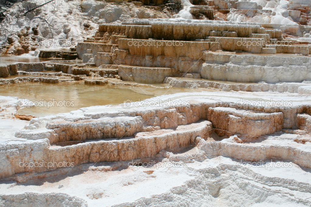 Geyser at Mammoth Hot Springs