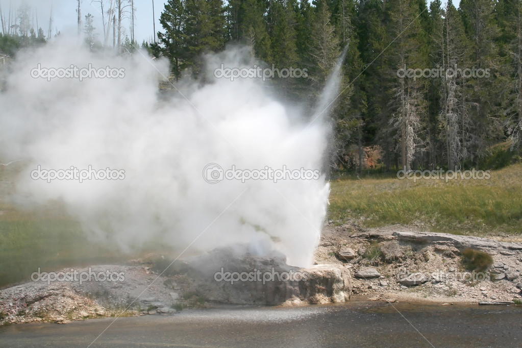 Active Geyser at Yellowstone