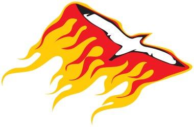 Burning Seagull