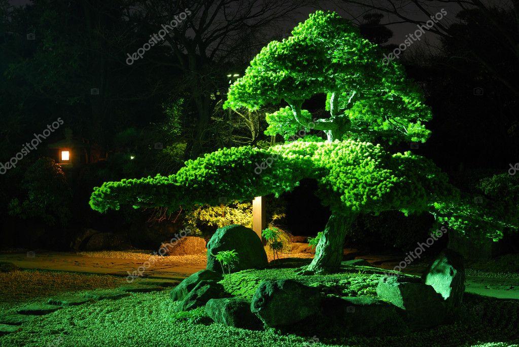 Giardino zen di notte foto stock yurizap 2803453 for Giardino zen interno