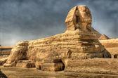 Fényképek HDR-kép a szfinx Giza. Egyiptom.
