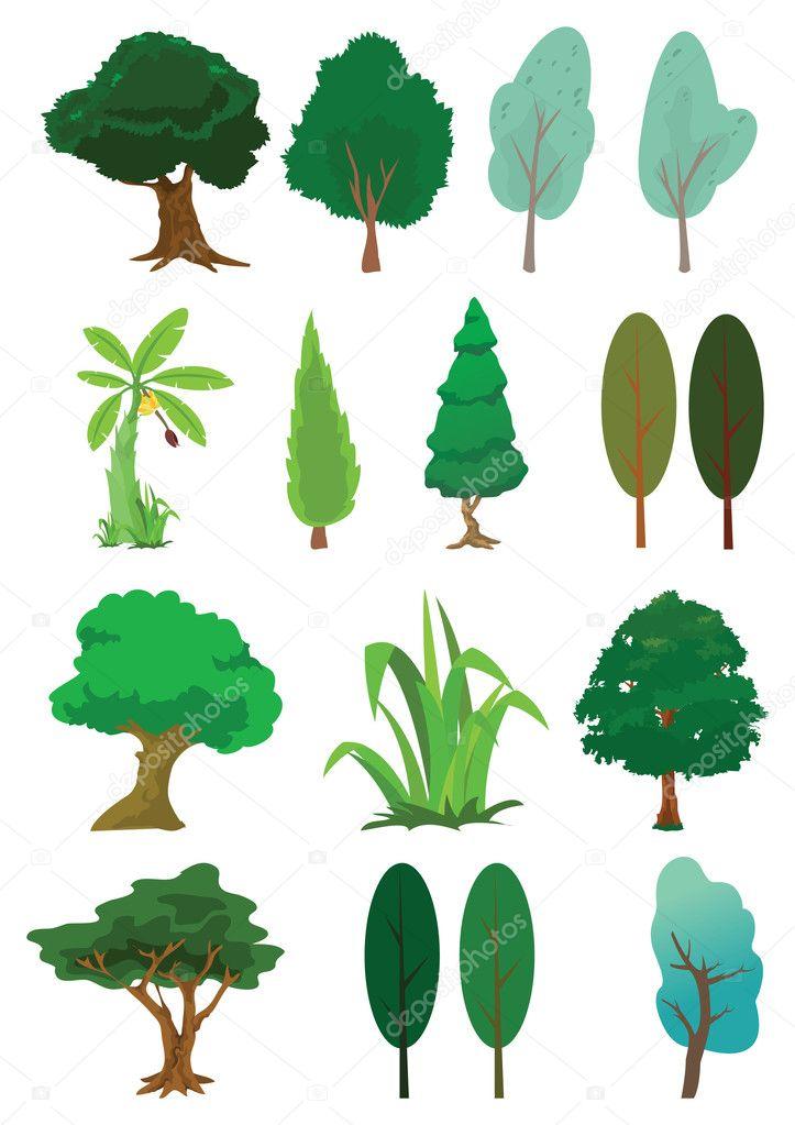Tree illustration in vector