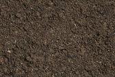Photo Soil background