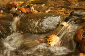 poklidné vody v potoce