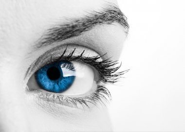 Close-up portrait of a beautiful female blue eye stock vector