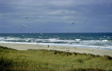 Stormy weather at beach, Sylt, Germany