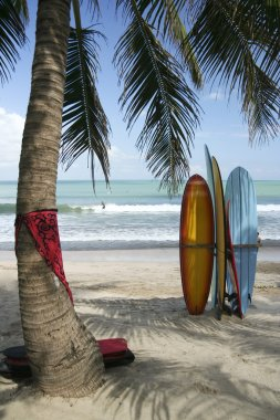 Bali boards surfing  kuta beach waves