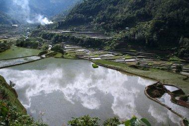 Elemental landscape