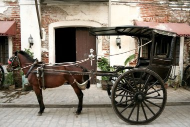 Calesa Horse drawn carriage vigan in the philippines