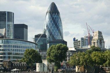 st mary axe tower London skyline uk