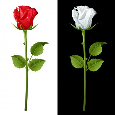 """Картина, постер, плакат, фотообои """"роза"""", артикул 3785550"""