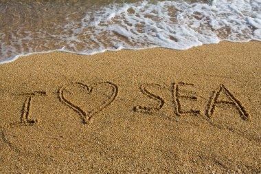 I love the sea.